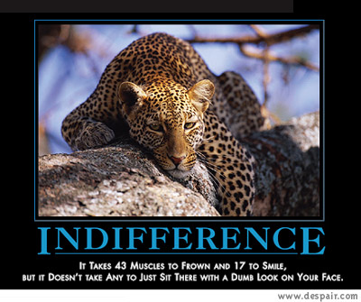 dm20-20indifference1